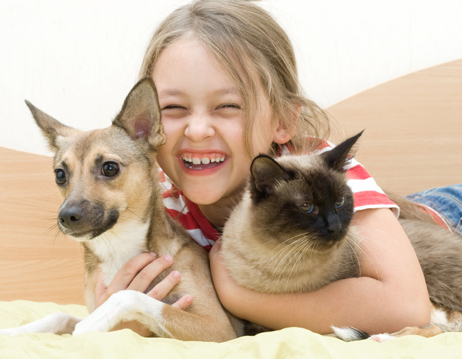 dog and cat with child