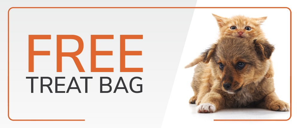 FREE Treat Bag